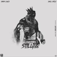 Sheek Louch Ft. Joell Ortiz - Still NY Shit